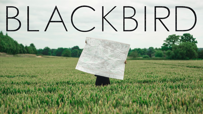 Poster Blackbird_Short_Thumbnail_Daniela_Pasquini